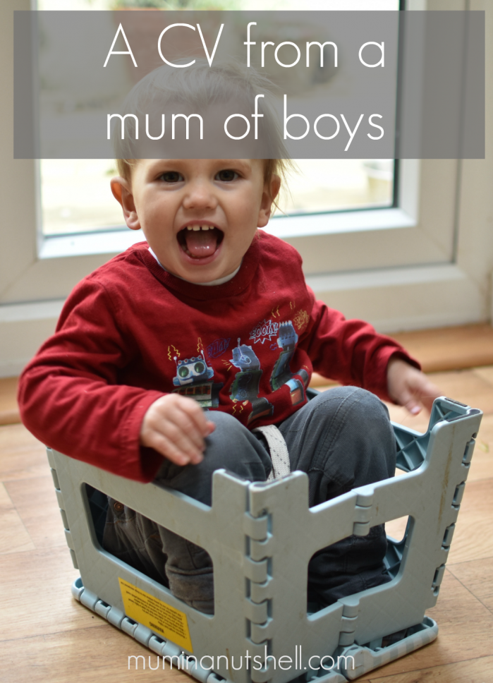 What are your mum skills? Could they land you your dream job? Here's some I've built up as a mum to 3 boys;
