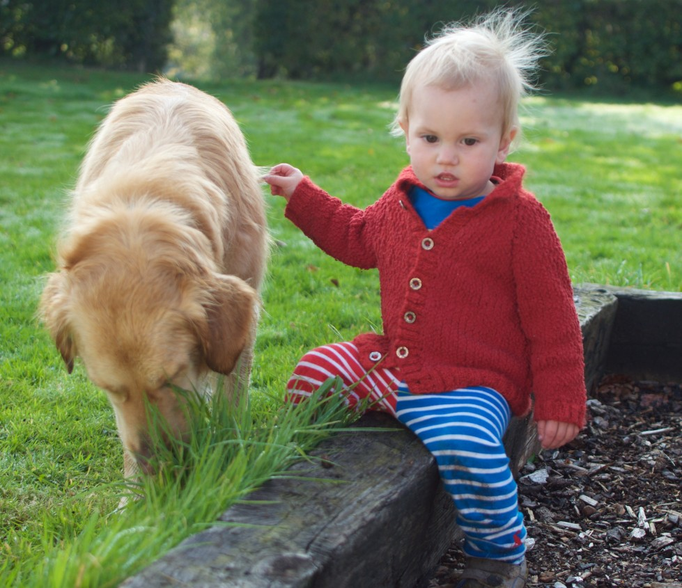 Living Arrows – One Boy And His Dog