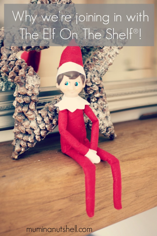 And This Is Why We're Doing The Elf on The Shelf ®