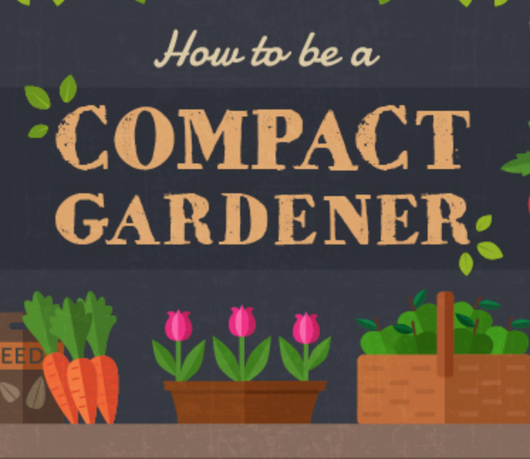 A Guide on How To Become A Compact Gardener