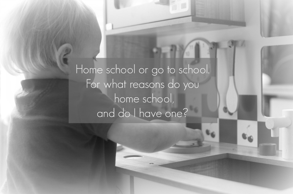 do you home school? what were your reasons for doing it?