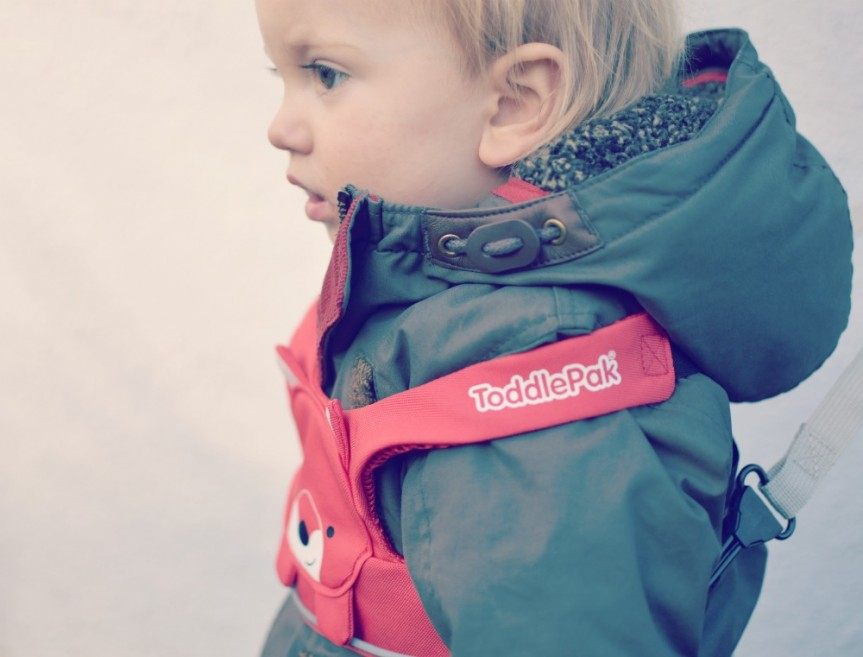 The ToddlePak reins by Trunki is the creme de la creme of toddler reins, find out more here